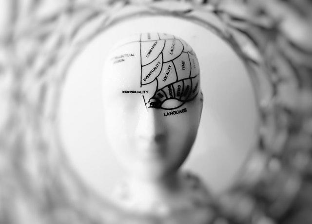 figurine of a brain